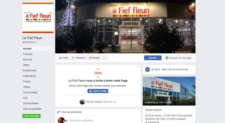 Facebook Fief Fleuri